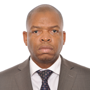 Paulo Mandlate (Head of Licensing and Exchange Control at Bank of Mozambique)